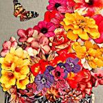 the-little-butterfly